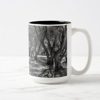 Tree Tunnel Two-Tone Coffee Mug