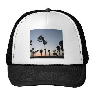 Tree Venice Beach Palm Trucker Hat