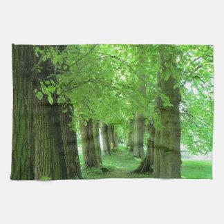 Tree Walk at Erddig Hall in Wales Kitchen Towels
