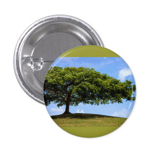 tree was true pinback button