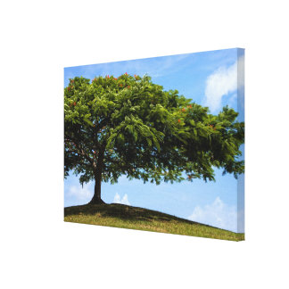 tree was true stretched canvas prints