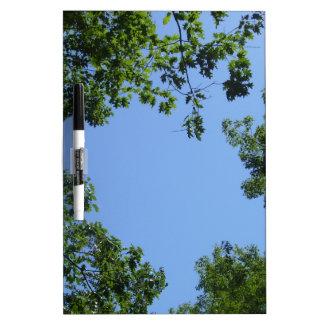 Tree Whiteboard