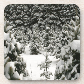 Tree Winter Wonderland Beverage Coaster