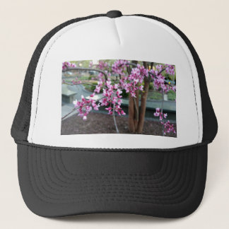 Tree with Pink Purple Flower Blossoms & Tree Trunk Trucker Hat