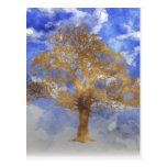 TREE WITH SKY POST CARD