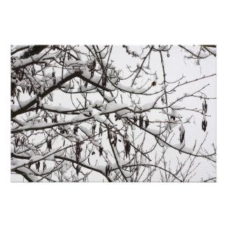 tree with snow photo print