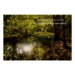 Tree with sun and wise Lao Tzu quotation Posters