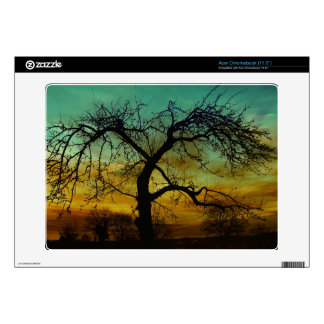 Tree with Sunset Backdrop Scene Acer Chromebook Decals