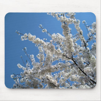 Tree with White Blossoms Mousepad