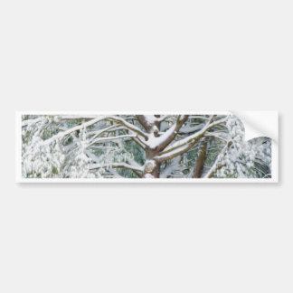 Tree with white fluffy snow bumper sticker