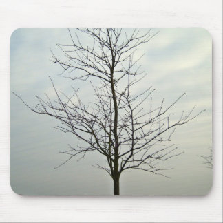 Tree without leaves against the blue sky mouse pad