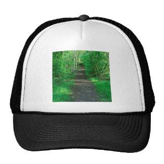 Tree Woody Path Trucker Hat