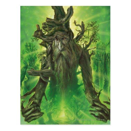 Treebeard Postcard