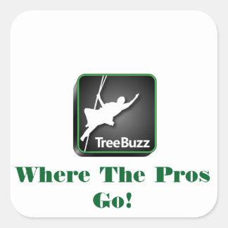 TreeBuzz square sticker