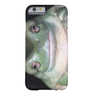 Treefrog del blanco, caerulea de Litoria, nativo a Funda Para iPhone 6 Barely There