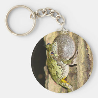 treefrog gris llaveros