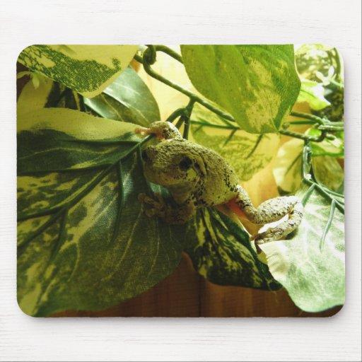 Treefrog Mousepad 2