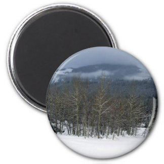 treegrove 2 inch round magnet