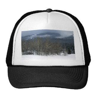 treegrove trucker hat