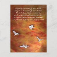 Treegulls Post Cards