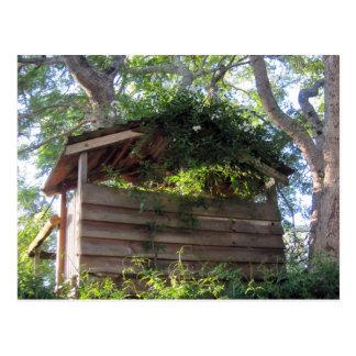 Treehouse Postcard
