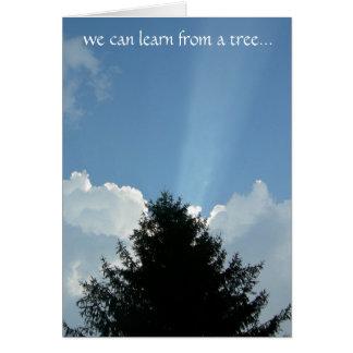 'Treehugger's' Card