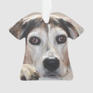 Treeing Walker Coonhound Hound Dog Ornament