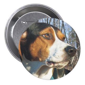 Treeing Walker Coonhound In Woods Button