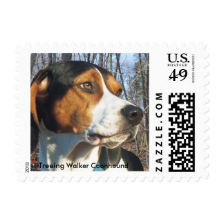 Treeing Walker Coonhound In Woods Postage