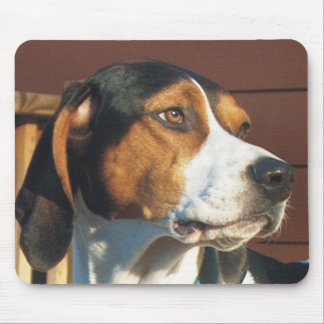 Treeing Walker Coonhound Mouse Pad