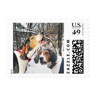Treeing Walker Coonhound Snowy Woods Postage