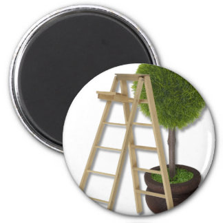 TreeLadder083010 2 Inch Round Magnet