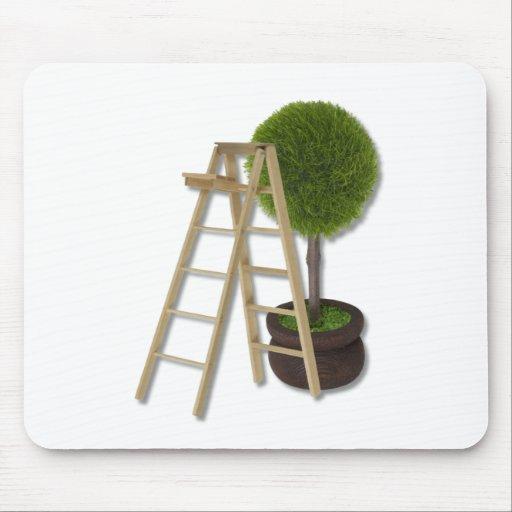TreeLadder083010 Tapetes De Ratones