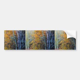 Treeline In Autumn Car Bumper Sticker