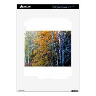 TREELINE IN AUTUMN iPad 3 DECAL