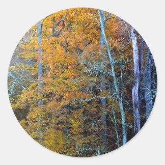 Treeline In Autumn Classic Round Sticker