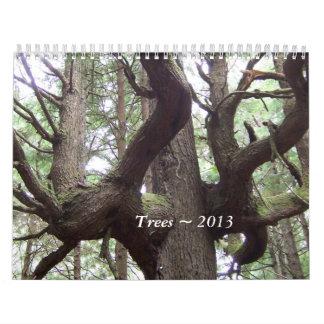 Trees ~ 2013 calendar