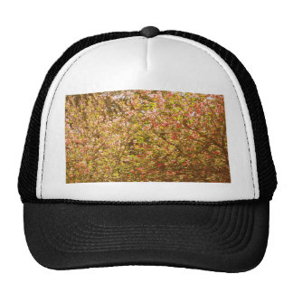 Trees #4 mesh hat