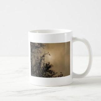 Trees against golden sunset mug