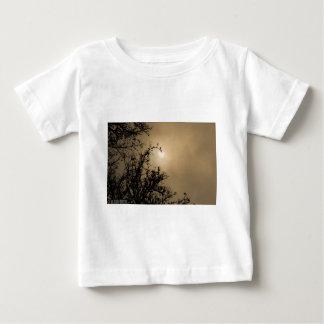 Trees against golden sunset t shirt