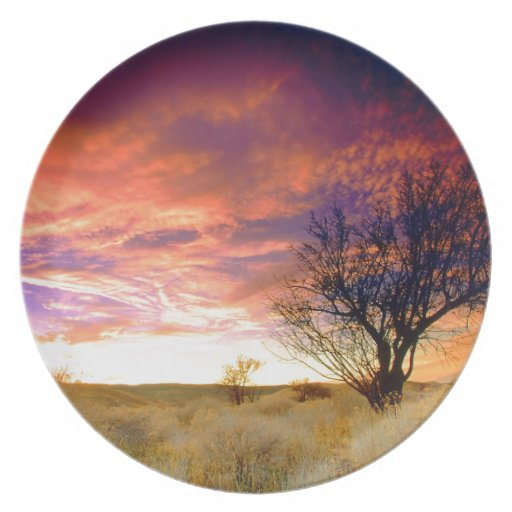 Trees Almond Tree Antelope Valley Dinner Plates