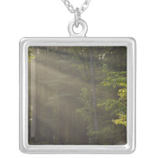 Trees alongside 7 Lakes Drive, Harriman, NY Silver Plated Necklace