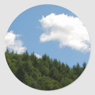 Trees and blue sky classic round sticker