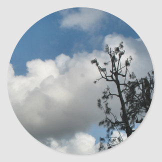 Trees and Clouds Classic Round Sticker