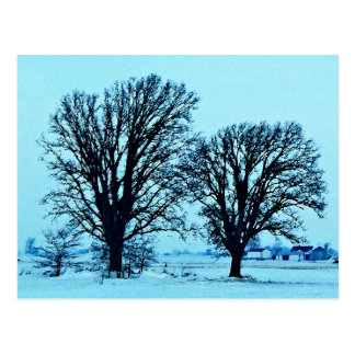 Trees and Farm in the Twilight with Snow Postcard