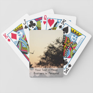 trees and flying bird against florida sunset bicycle playing cards