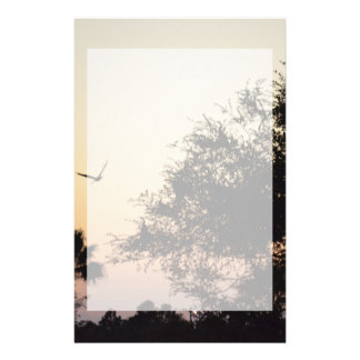 trees and flying bird against florida sunset stationery design