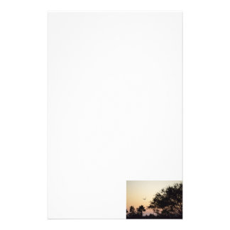 trees and flying bird against florida sunset stationery paper