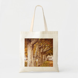 Trees and leaves in urban park in autumn tote bag