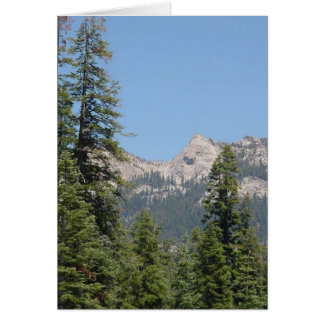 trees and mountains cards